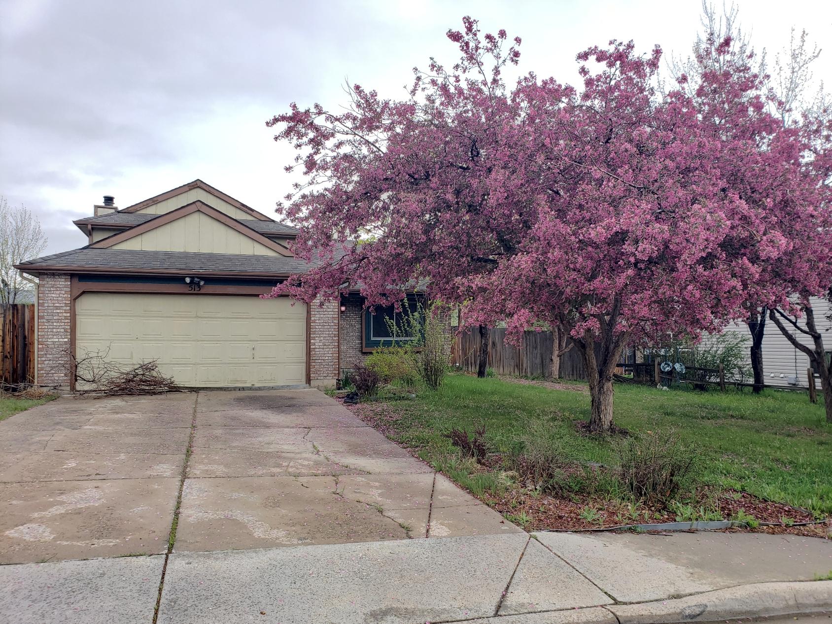 513 Edgewood Drive, Loveland CO