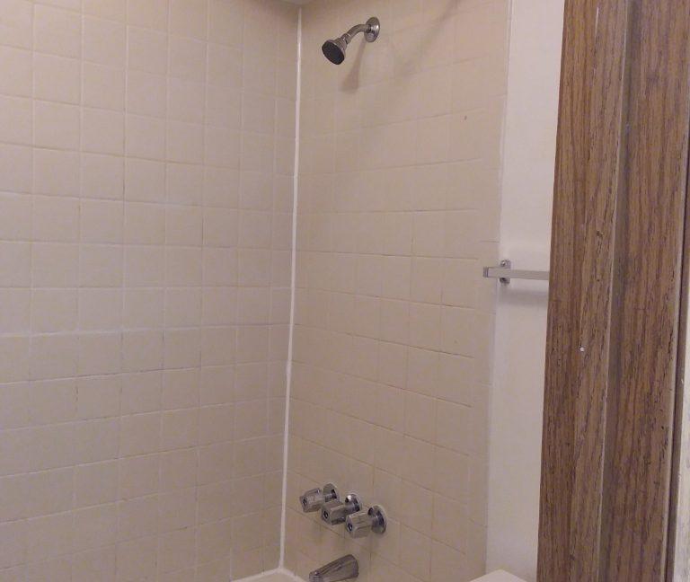 downstairs bathroom tub.shower wh602.201